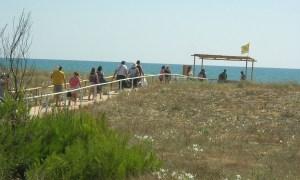 spiaggia_paestum3