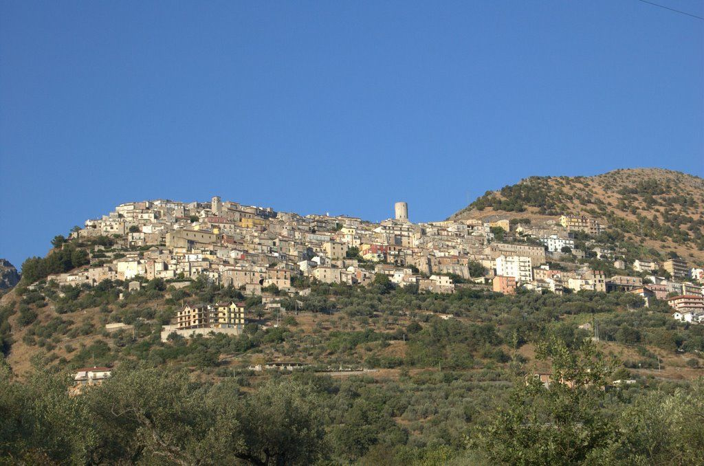 Photo of Castelcivita, anziana trovata morta in casa