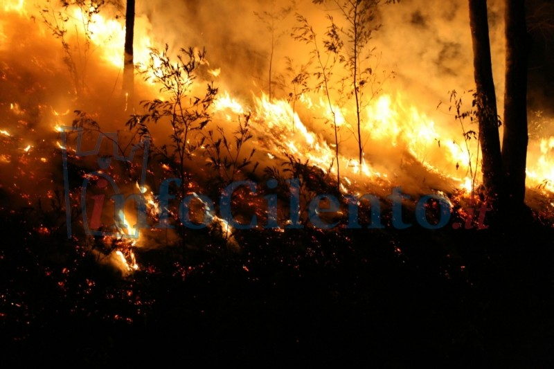 Photo of Brucia la provincia: fiamme dal Cilento a Salerno