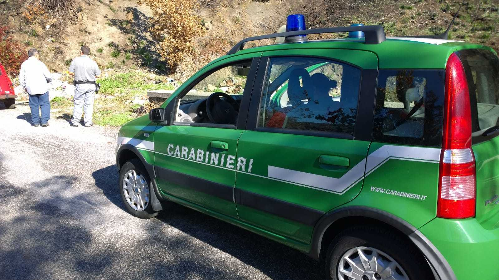 Photo of Cannalonga: taglio abusivo d'alberi, multa di 11mila euro
