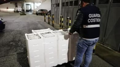 Photo of Controlli al Mercato Ittico di Salerno: sequestrati 500 chili di prodotti