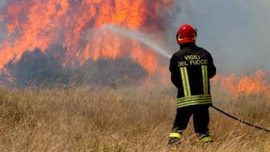 Photo of Brucia residui vegetali e provoca incendio nel salernitano: denunciato