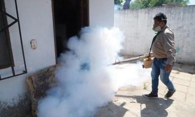 Dengue en Santa Cruz