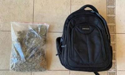 Tráfico de marihuana