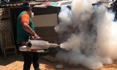 Lucha contra el Dengue