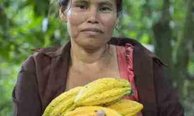 Cacao Boliviano