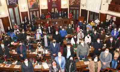 Cámara_de_diputados