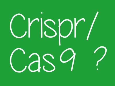Crispr/Cas9 : encore inefficient en santé, mais déjà bon en agriculture ?