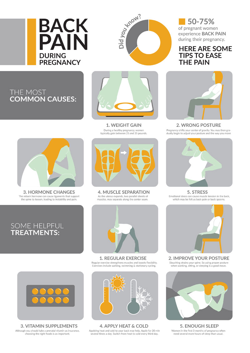 Infographic: Back Pain During Pregnancy - InfographicBee.com
