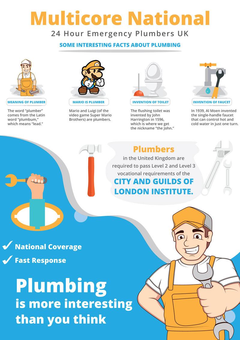 Infographic Interesting Plumbing Facts  InfographicBeecom
