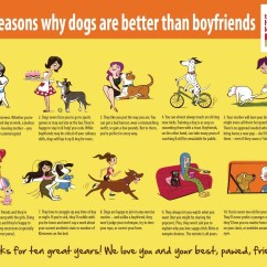 The Honest Kitchen Com Small Tables Ikea Infographic Why Dogs Are Better Than Boyfriends