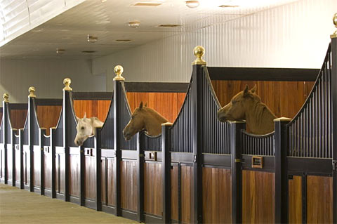 Maintaining Good Air Quality in Horse Stables