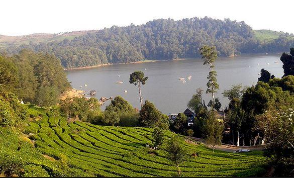 Situ Patenggang Ciwidey Bandung