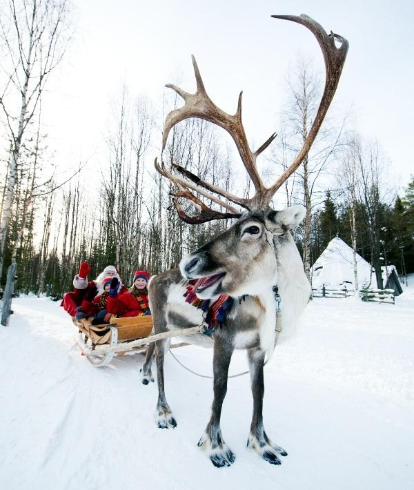 taxidi_xristougenna__prwtoxronia_2012___Santas_reindeer