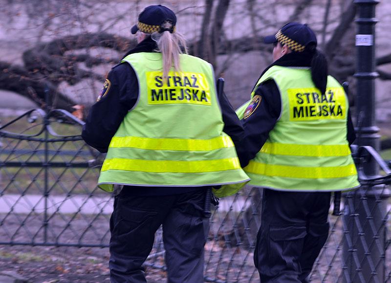 Poszukiwany przestępca w rękach strażników miejskich