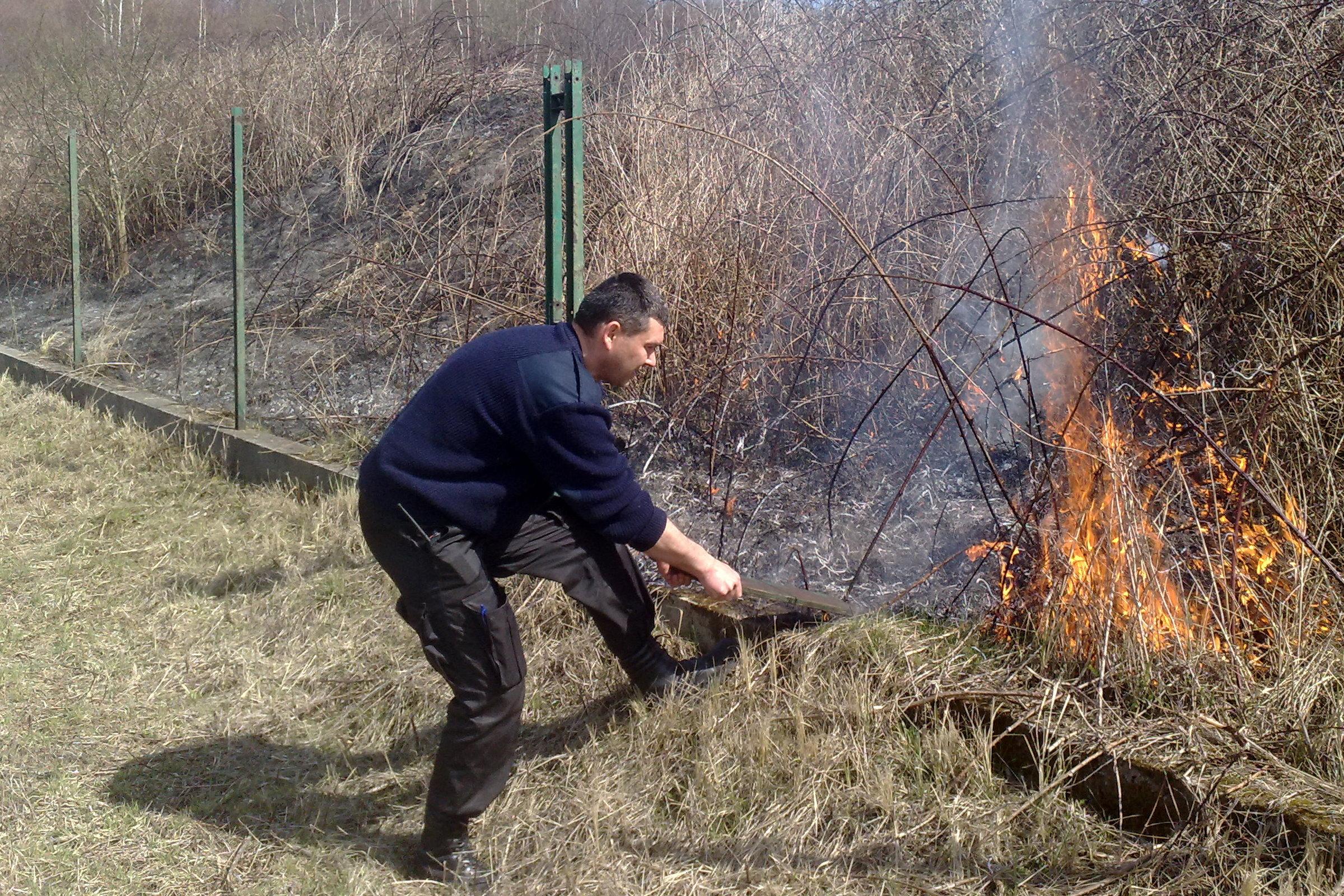 Strażnicy miejscy gasili płonące łąki w rejonie Lasu Wolskiego