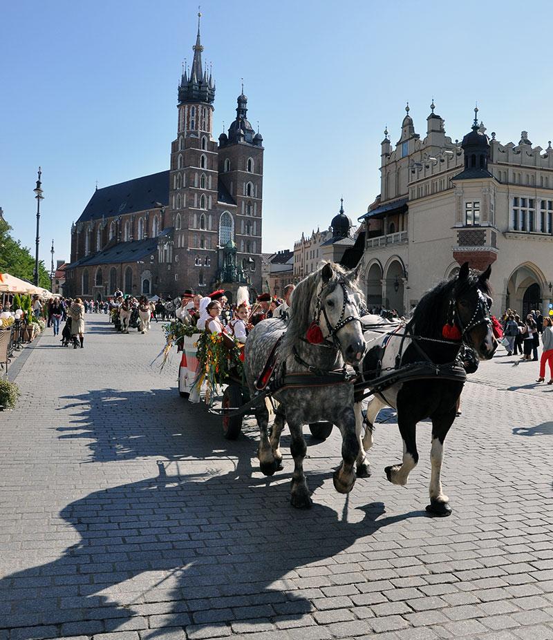 Małopolskie Święto Konia