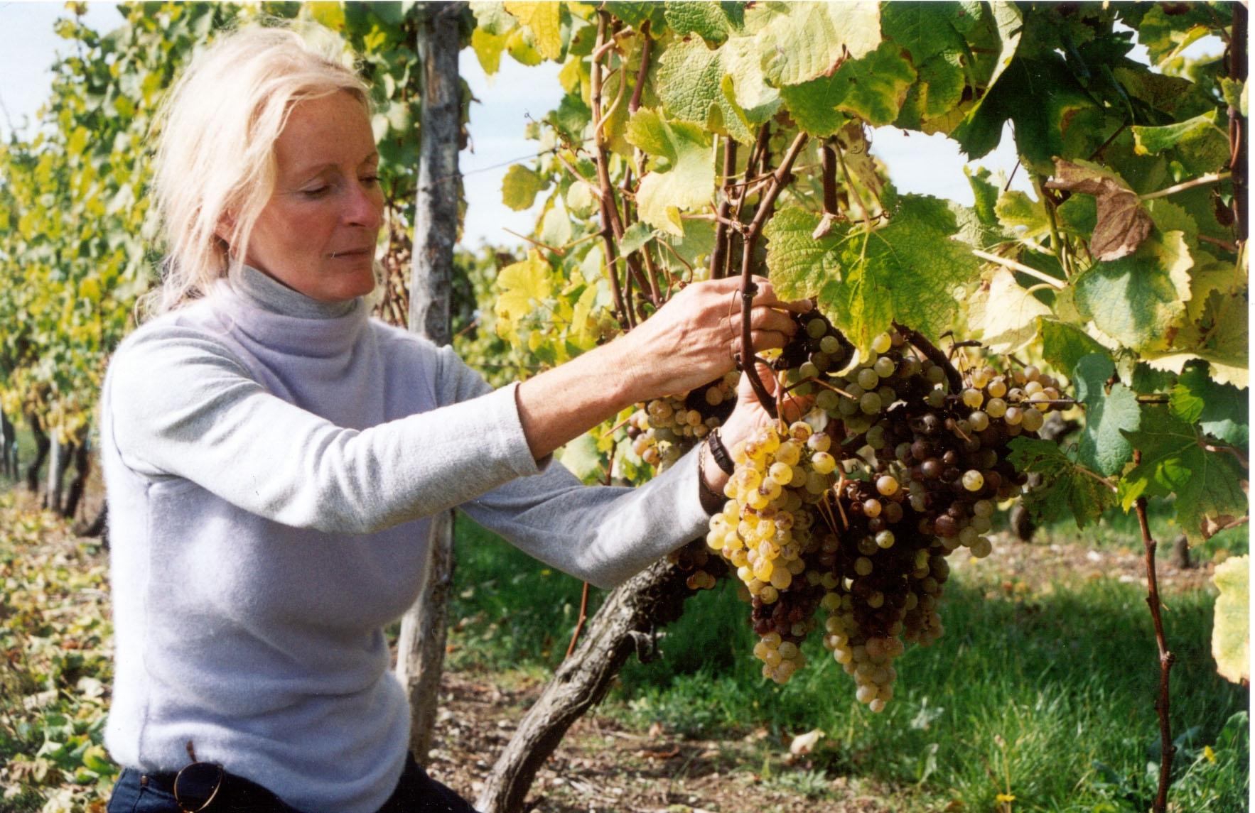 Najsłynniejsza Brytyjka produkująca wino na ENOEXPO 2012