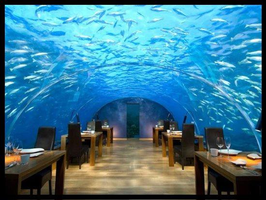 Restaurant Conrad, Maldives