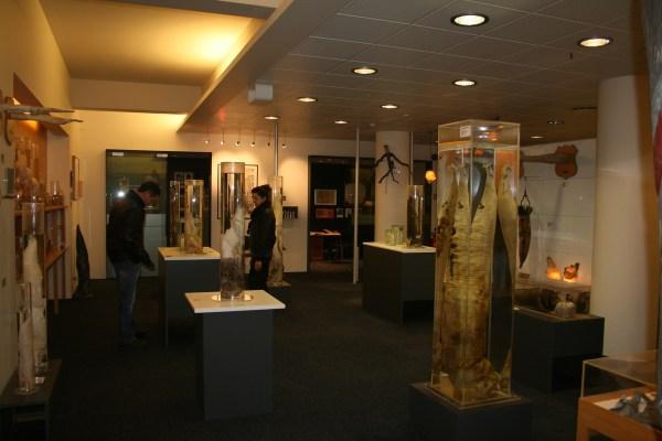 top_10_musée_insolite (10)