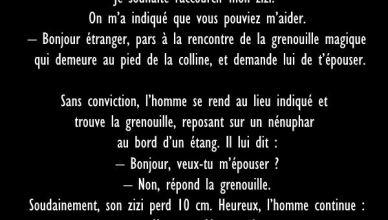 #28 - Blague : La Grenouille Magique
