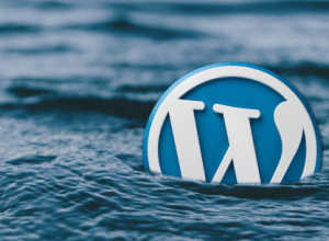 wordpress-logo-sea