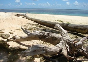 Laura Beach is a great getaway spot at the western end of Majuro. Photo: Karen Earnshaw