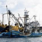 Fishing Ships in RMI