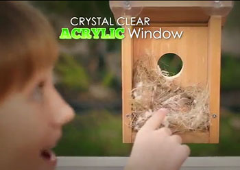 even more appalling they show a cat eyeing the birds and pretend this is some sort of desirable product feature not only will the birds be terrified at