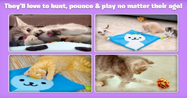 Kitty Cat Toy Mat
