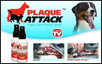 Plaque Attack As Seen On TV