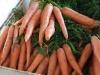 frutta-e-verdura-domenico-bilancio_4_0
