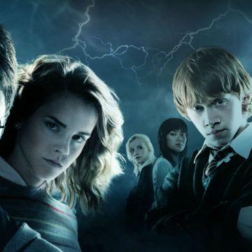 Napoli, arriva la magia di Harry Potter. In mostra dal 4 dicembre all'8 gennaio al Museo Duca Di Martina
