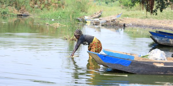 A woman collects water for domestic use at one of the fishing grounds along Lake Nakivale