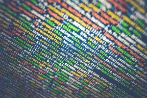 Como inserir um link no texto no php?