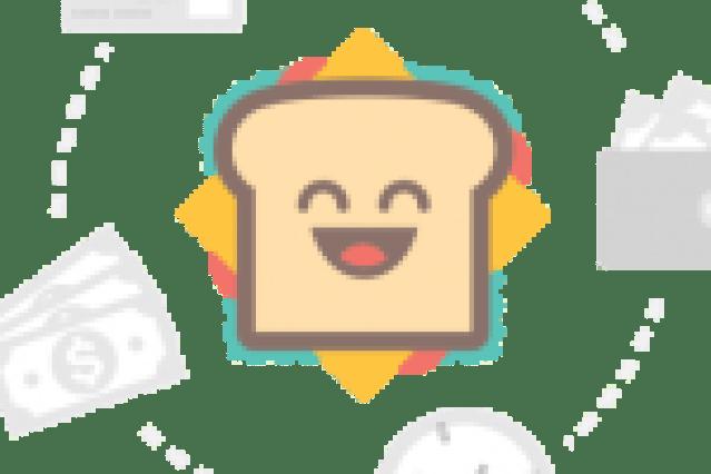 Hari Keputeraan Sultan Perak