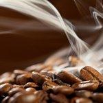 belajar roasting kopi
