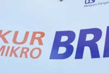 Kredit Pinjaman Mikro BRI
