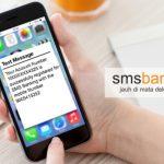 Cara Cek Saldo Tabungan Bank Mandiri menggunakan SMS Banking