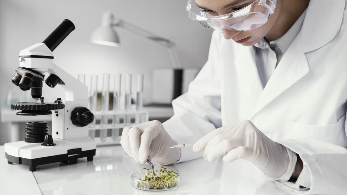 Convocatoria de proceso selectivo para cubrir 101 plazas como Doctor/a Fuera de Convenio de la Agencia Estatal Consejo Superior de Investigaciones Científicas