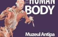 """Programul expoziției """"THE HUMAN BODY"""" în Noaptea Muzeelor"""