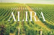 Sărbatoarea Recoltei si a vinului Alira la Aliman