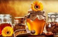 Imunitatea copiilor si produsele apicole