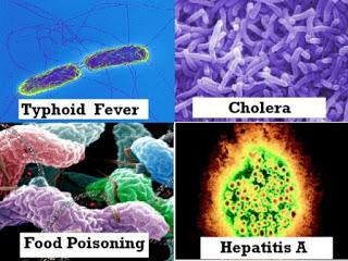 Water Born Diseases