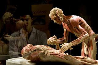 Plastination of Corpse
