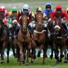 List of 'Turf Clubs' in India conducting 'Horse Racing'
