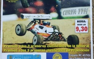 Última prueba puntuable del Campeonato de Sevilla 1/8 tt gas 2013