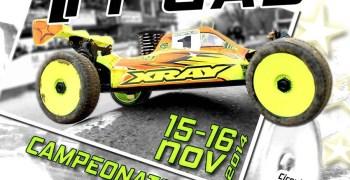 Este finde, Campeonato de Canarias de Radiocontrol 1/8 TT GAS