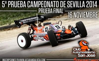 16/11 - Quinta prueba Campeonato de Sevilla 1/8 TT Gas 2014
