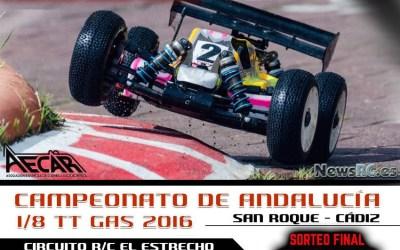 2 y 3 de Julio - Tercera prueba Camp. de Andalucía 1/8 TT Gas 2016